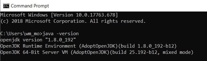 adoptOpenJDK.jpg